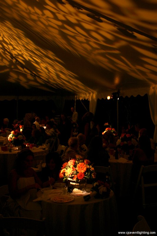 Ceiling Texture and Pinspots & CJC | Event Lighting Blog azcodes.com